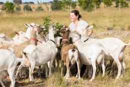 Sarah Ajzner, Dreaming Goat Dairy