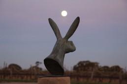 Bunny with Moon uai