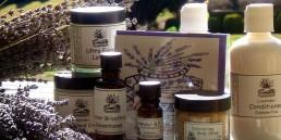 Lavandula Products uai
