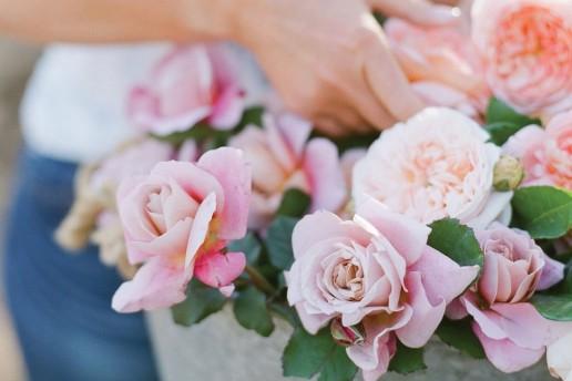 Roses 2 uai