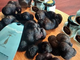 Black Cat Truffles 1 uai
