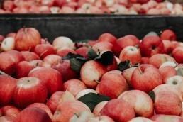 MARKET apples 2 uai