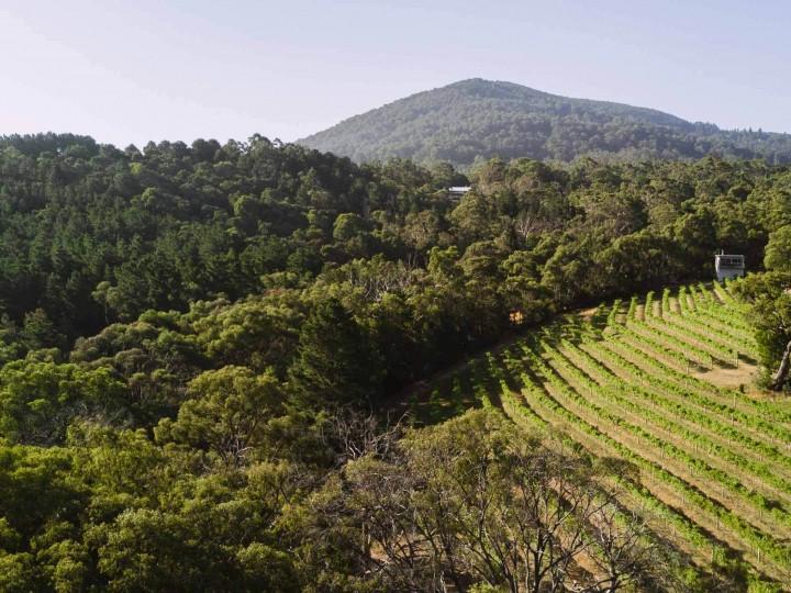 Mount Towrong3 uai