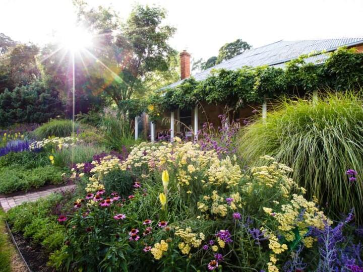 Garden St Erth 2 uai