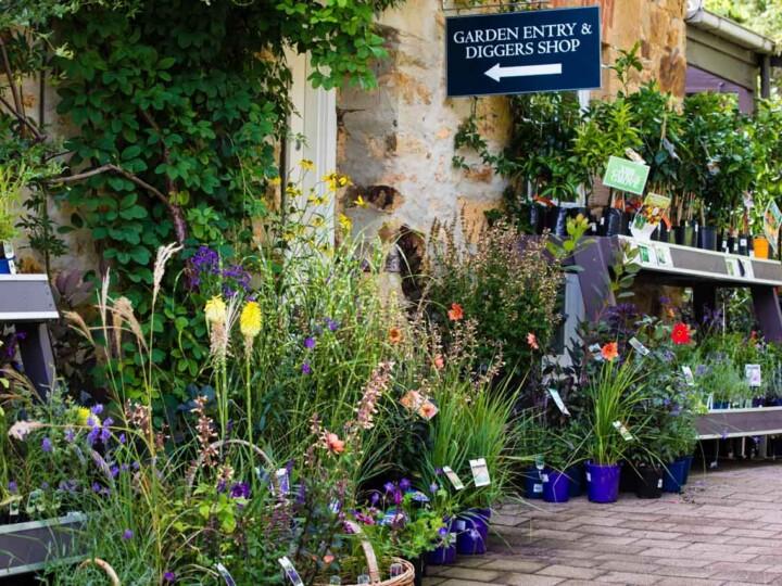 Garden St Erth 3 uai
