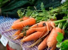 Malmsbury Village Farmers Market 5 uai