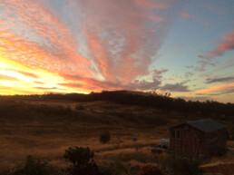 Morningswood Farm 1 uai
