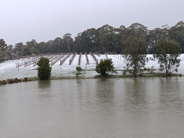 Wombat Forest Winery 6 uai