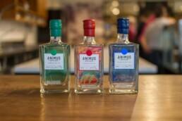 Animus Distillery 3 uai