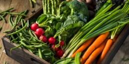 Gisborne Market 1 uai