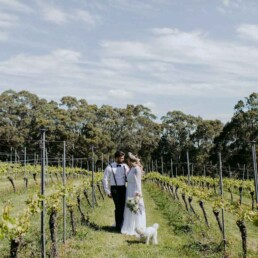 Mount Macedon Winery 3 uai