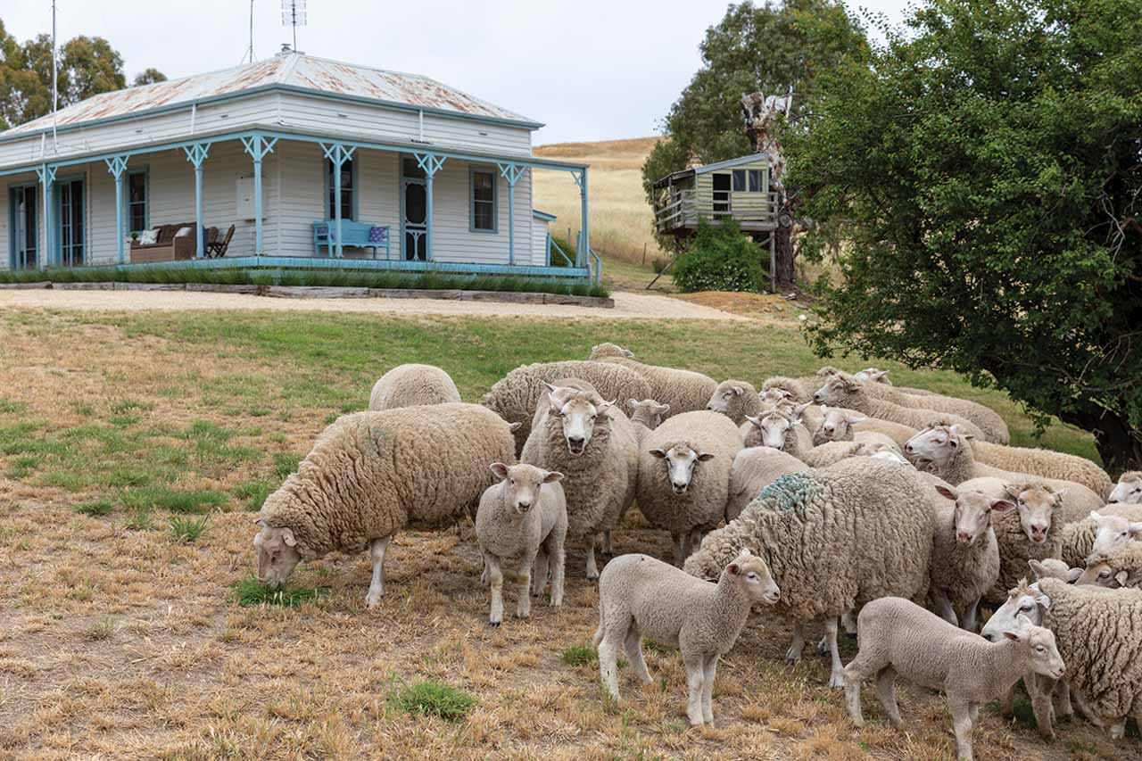 Flophouse Charter Farm 54