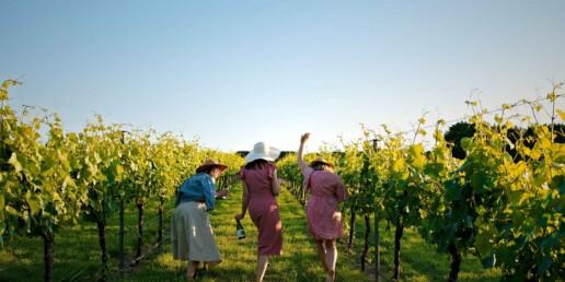 Parkside Winery Photo lifeinlight uai