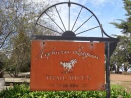 Hepburn Lagoon Trail Rides 1 uai