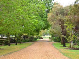 Hepburn Lagoon Trail Rides 4 uai