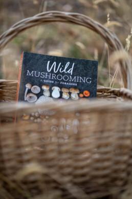 Mushrooming Book uai