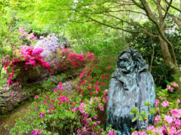 Forest Glade Gardens 3 uai