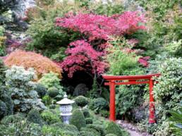 Forest Glade Gardens 7 uai