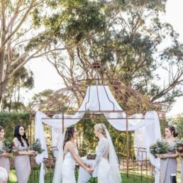 roombas Wedding 2 uai