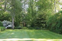 Bolobek Garden Spring1 uai
