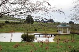 Olive Grove Discover Daylesford32 uai