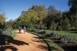 Castlemaine Botanical Gardens2 uai